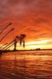 заход солнца plms okanongo Стоковые Изображения