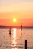 заход солнца puget стоковые фото
