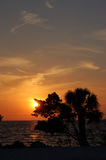 заход солнца punta gorda Стоковые Фото