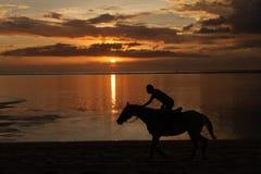 заход солнца riding лошади Стоковое фото RF