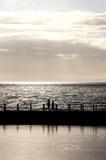 заход солнца silhouetted людьми Стоковые Фото