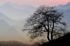 заход солнца smokey горы Стоковые Фото