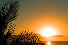 заход солнца tenerife Стоковая Фотография