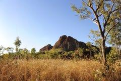 захолустье земли bush Стоковые Изображения