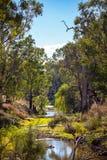 Захолустье на Dubbo Австралии Стоковое Изображение RF