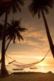 заход солнца гамака ослабляя Стоковое Изображение