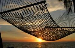 заход солнца гамака Стоковые Изображения