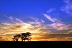 заход солнца заповедника прерии природы jarrett Стоковые Фото