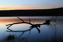 заход солнца озера Стоковое Изображение RF