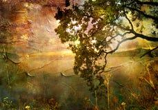 заход солнца осени Стоковые Изображения RF