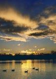 заход солнца парка Стоковые Фотографии RF