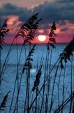 заход солнца померанцового красного цвета Стоковая Фотография RF