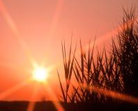заход солнца прерии Стоковые Фотографии RF