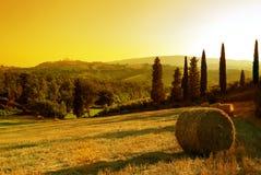 заход солнца Тоскана ландшафта Стоковая Фотография