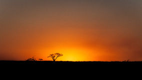 заход солнца Африки Стоковая Фотография