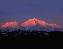 Заход солнца альпийского свечения на Mt Shasta Стоковое фото RF