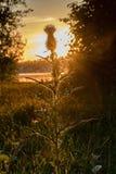 Заход солнца дальше видит стоковое изображение