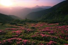 заход солнца большого национального парка гор закоптелый Стоковое Фото