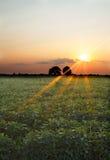 Заход солнца Висконсина стоковое фото