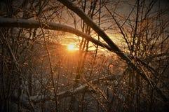 Заход солнца Висконсина Стоковое Изображение RF