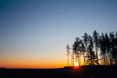 Заход солнца, восход солнца в небе соснового леса ярком красочном драматическом и темная земля Стоковые Фотографии RF