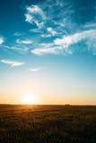 Заход солнца, восход солнца, Солнце над сельским полем сельской местности Яркие голубое и желтый Стоковые Фотографии RF