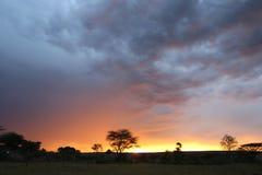 Заход солнца в Африке Стоковое Фото
