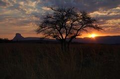 Заход солнца в Африке Стоковая Фотография RF