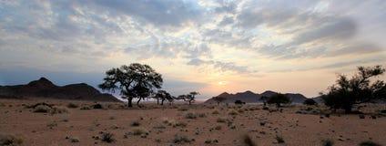 Заход солнца в Африке Стоковые Фото
