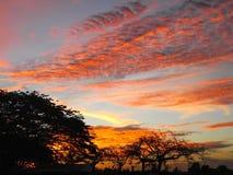 Заход солнца в Борнео - Малайзии Стоковое Изображение