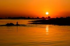 Заход солнца в Ботсване на реке Chobe Стоковое Изображение RF