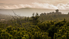 Заход солнца в горе Giants Стоковое Изображение RF