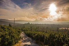 Заход солнца в горе Giants Стоковые Фотографии RF