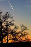 Заход солнца в грандиозном каньоне Стоковое фото RF