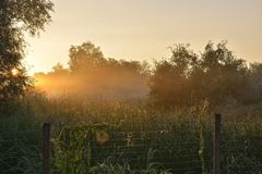 Заход солнца в лете Стоковая Фотография