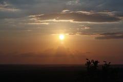 Заход солнца в джунглях или сельве Peten Гватемале Стоковые Изображения RF