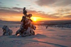 Заход солнца в зиме в Финляндии Стоковая Фотография RF