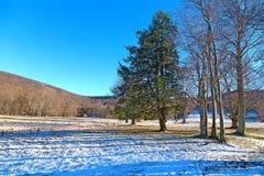 Заход солнца в зимнем лесе на холмах снега Стоковая Фотография