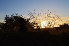Заход солнца в Йоркшире Стоковые Изображения