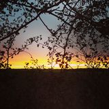 Заход солнца в Линкольншире Стоковое фото RF