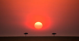Заход солнца в национальном парке Maasai Mara вышесказанного Кения стоковая фотография rf