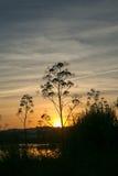 Заход солнца в озере Стоковое Изображение RF