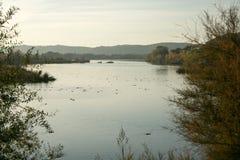 Заход солнца в озере Стоковые Изображения