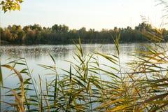 Заход солнца в озере Стоковая Фотография RF