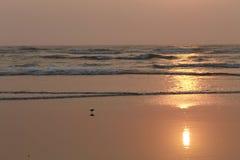 Заход солнца в океане Стоковое Фото