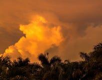 Заход солнца в острове сокровища Стоковое Изображение RF