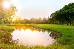 Заход солнца в парке города стоковая фотография rf