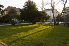 Заход солнца в парке стоковое изображение