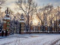 Заход солнца в парке Стоковое Фото