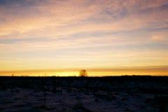 Заход солнца в поле Стоковое фото RF